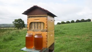 The Flow Hive – boon or boondoggle?